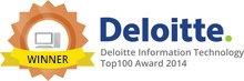 Deloitte Winner 2014